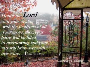 Proverbs 3  9  10