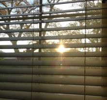 Sunrise December 1